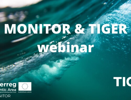 TIGER & MONITOR Collaboration Workshop on Reliability