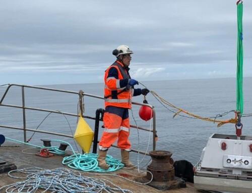 Paimpol-Bréhat Tidal Test Site: Improving the quality of tidal turbine blades